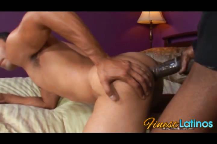 Porn Tube of Pedro Fucks A Black Cock